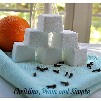 Orange and Clove Sink Freshening Tabs